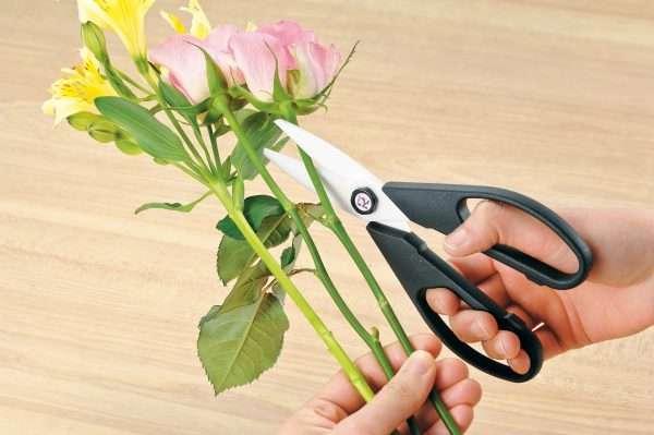 Керамические кухонные ножницы Forever